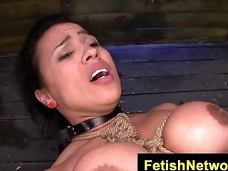 Fetishnetwork Becca Diamond Corded Cougar