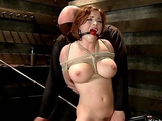 Tied On The Floor Big-titted Honey Vibed