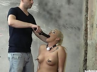 Huge-chested Bombshell Blonde Daisy Lee Tied To A Stool And Used Hard-core