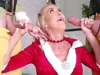 What A Cougar Going Wild On Christmas Eve